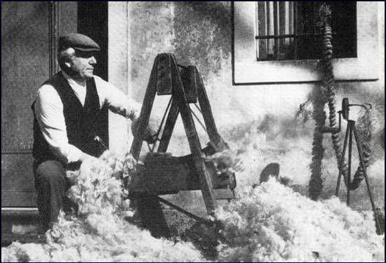 cardatore della lana