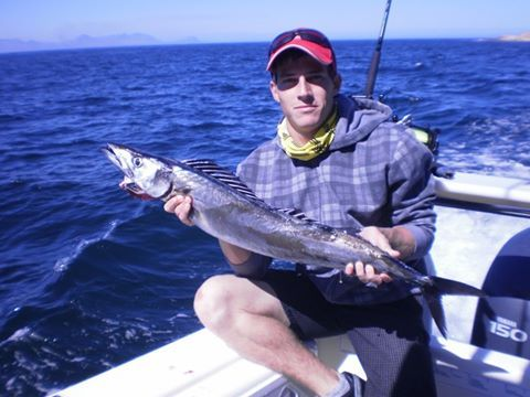 Caught 9 nice snoek at Simons Town. Unfortunately no yellowfin tuna came out.  Photo by: Stephan Steve-o Olivier