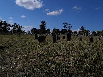 Old graves at Rookwood, near the Necropolis Circuit.