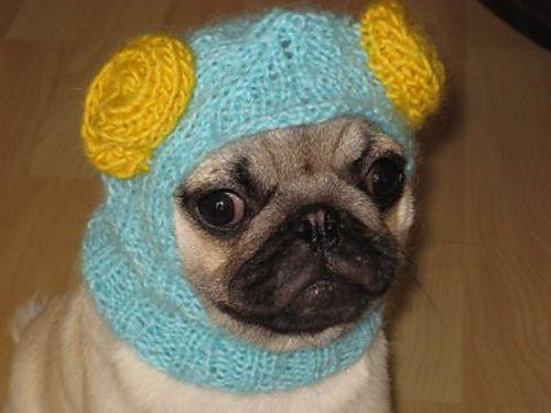 Pug Balaclava Knitting Pattern : 17 Best images about crochet... pets on Pinterest ...