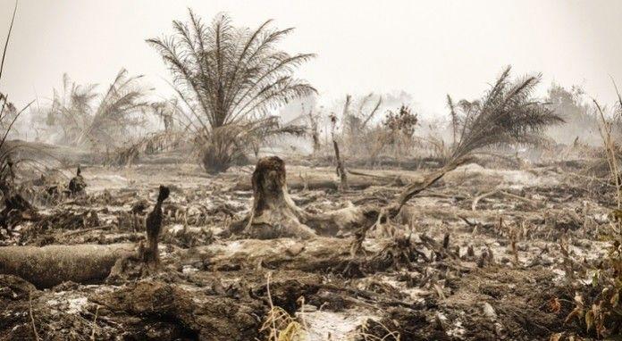 Η Γη βιάζεται στην Ινδονησία μακρυά από τις κάμερες