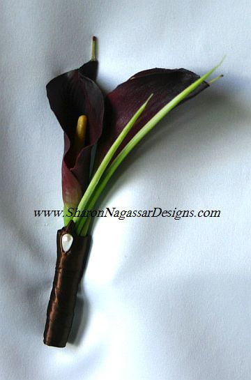 Google Image Result for http://www.sharonnagassardesigns.com/FuchsiaPeonyChocolateCallaLily/ChocolateEggplantCallaLilyBoutonniere.jpg