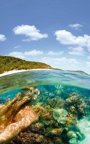 Snorkelling activities near Hamilton Island, Australia