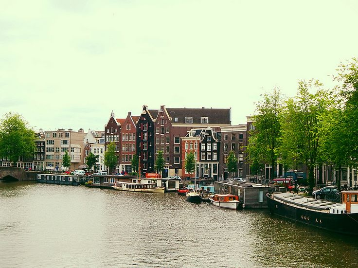 Want to move to Amsterdam