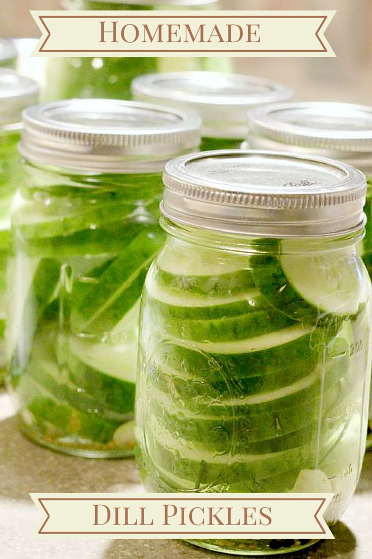 Homemade Refrigerator Dill Pickles. Delicious and easy recipe!