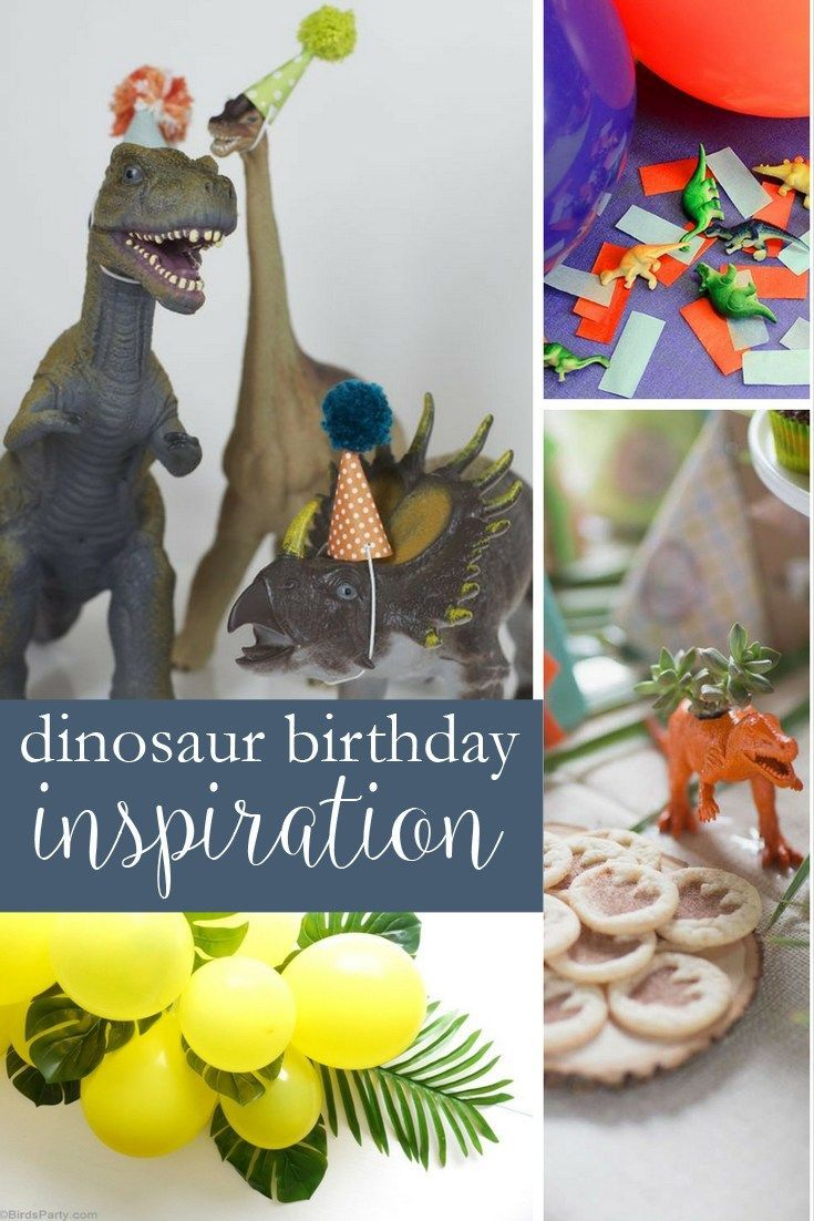 22 best Dinosaur Birthday Party images on Pinterest Dinosaur