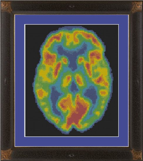 Science cross-stitch pattern: PET scan of human brain