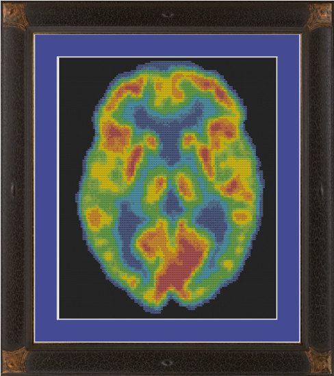 PET scan cross stitch