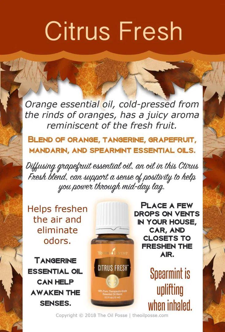 SUMMER 2: Ultimate Event Design Set | The Oil Posse | Young essential oils, Cedarwood essential