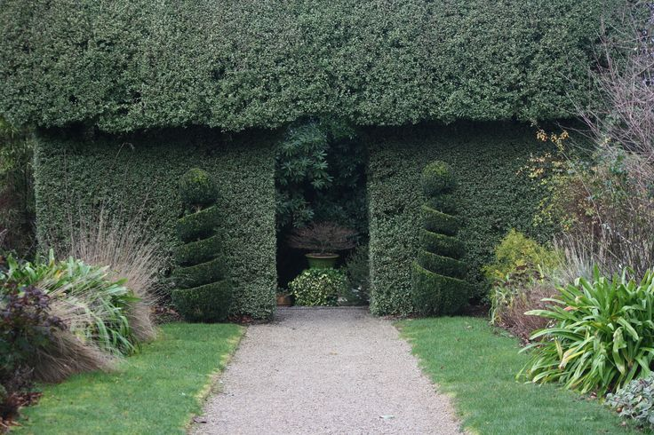 What's behind the hedge?