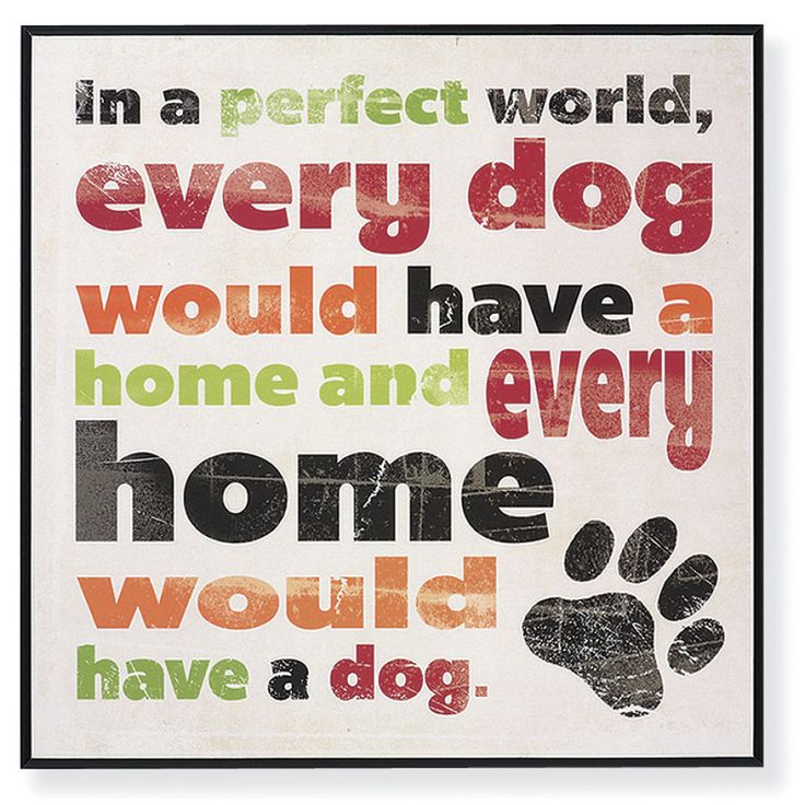 Perfect World Sign - Dog Beds, Dog Harnesses and Collars, Dog Clothes and Gifts for Dog Lovers | In The Company Of Dogs