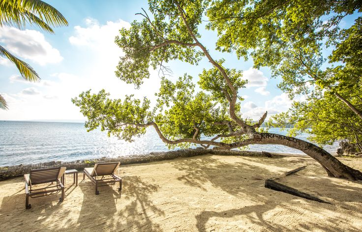 The best place to sun tan on Iririki Island Resort. The jewel of the south pacific located in Vanuatu.