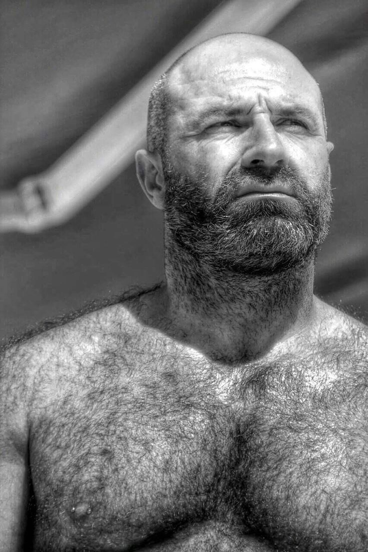 Naked Hairy Grandpa Cheap 724 best cool grandpa images on pinterest | bear, bear men and bears