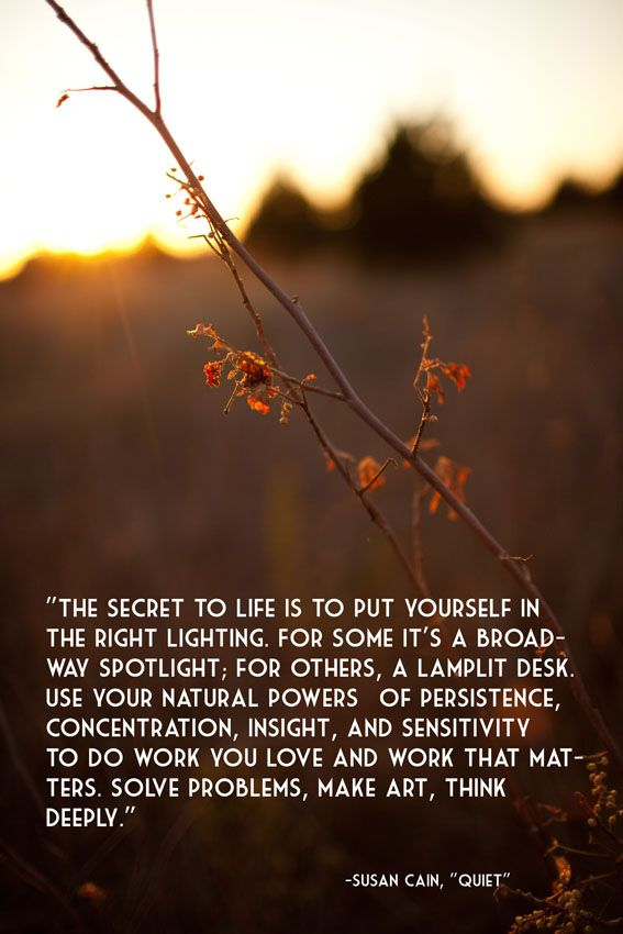 the secret to life is to put yourself in the right lighting. -susan cain