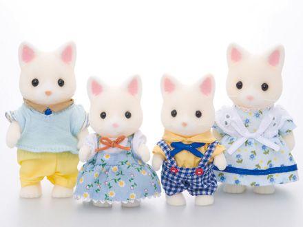 Família Gato de Seda