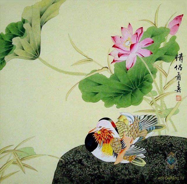 Мандариновая утка - Китай традиционная живопись Гохуа
