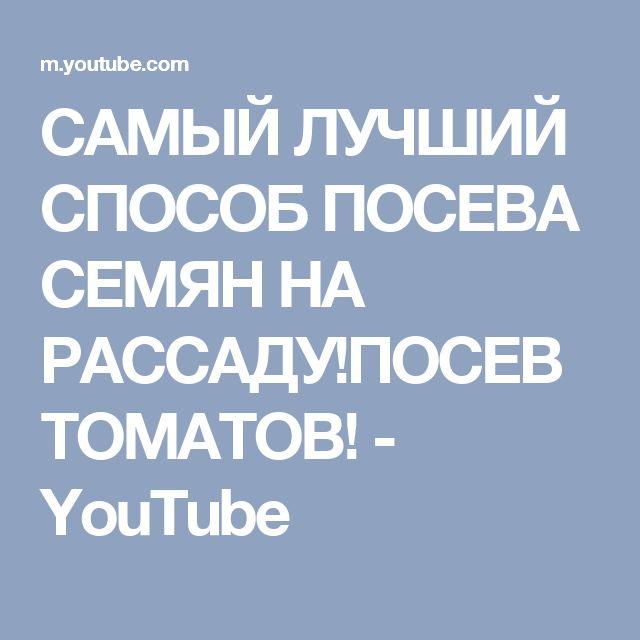 САМЫЙ ЛУЧШИЙ СПОСОБ ПОСЕВА СЕМЯН НА РАССАДУ!ПОСЕВ ТОМАТОВ! - YouTube