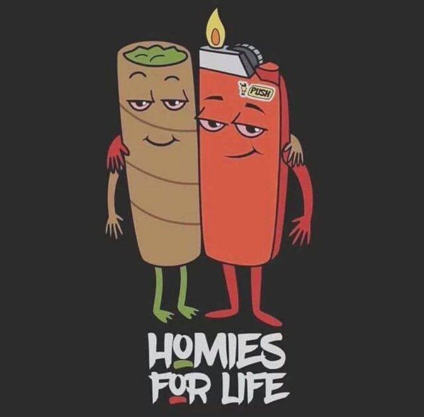 Fotos y videos de Stoner Gifs ™ (@StonerGifss) | Twitter