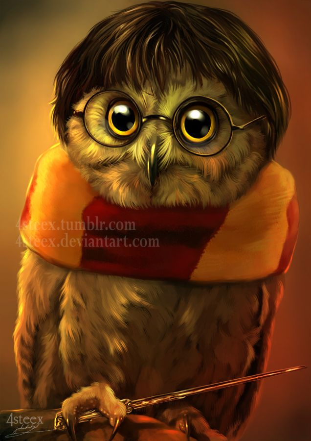 Owly Potter by 4steex.deviantart.com on @DeviantArt