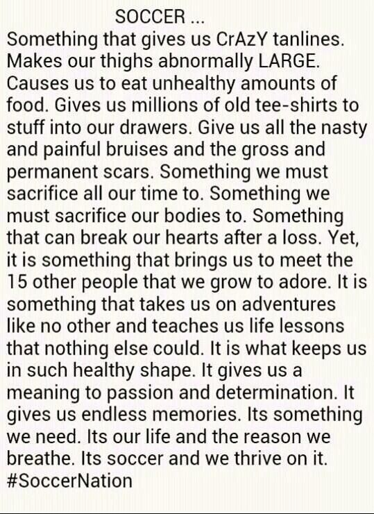 I can not explain how perfect this is.