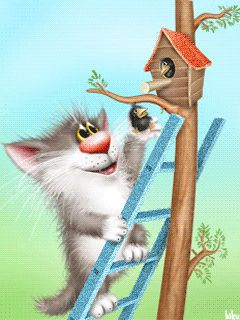 KITTEN PUTTING A BIRD BACK IN ITS BIRDHOUSE