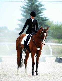 In the first salute, the world around you is silent. #dressage