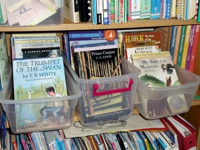 Organizing your homeschool library: Schools Rooms, Homeschool Rooms, Homeschool Ideas, Homeschool Mom, Homeschool Libraries, Schoolroom Ideas, Homeschool Organizations, Libraries Bookshelves, Blog