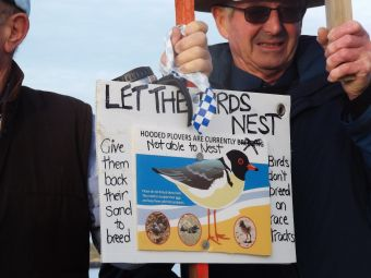 protesters-at-killarney-beach-aiming-to-save-protected-hooded-plover-picture-by-j-fawcett-28-oct-2016