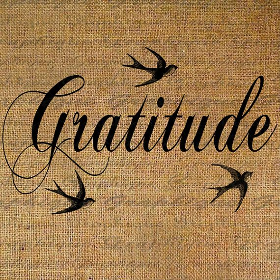 Gratitude Text Word Birds Flying Script Digital Image by Graphique