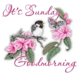 good+morning+sunday+images+with+doves | Good Sunday morning, Nanny, Susa, Roy and everybody.