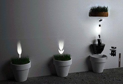 flower light