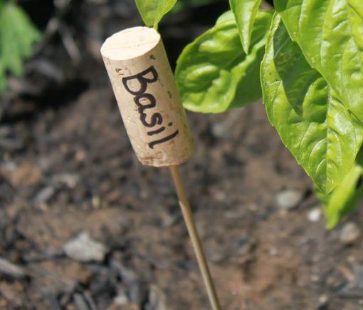 Wine Cork Garden Marker - Recycled Garden Idea