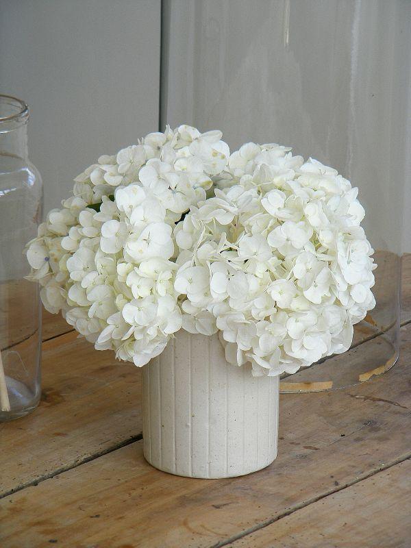 C'est toujours au cours de mes ballades à pied que je découvre les bons coins pour cueillir telle ou telle fleur... Le coin des...