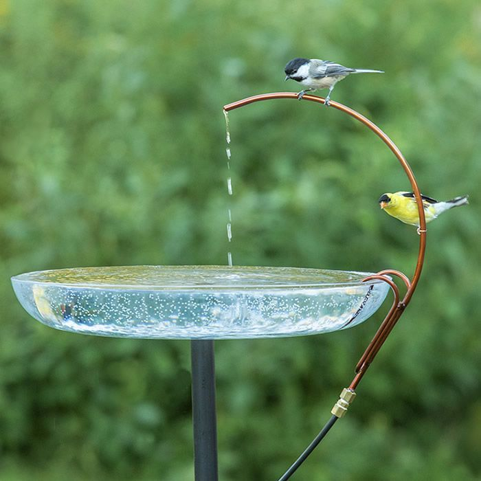 Universal Dripper: Birds prefer moving water. The Universal Dripper provides dripping water for your birds, and it's designed to fit ANY bird bath.