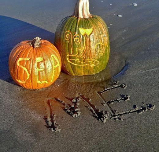 Best coastal fall images on pinterest