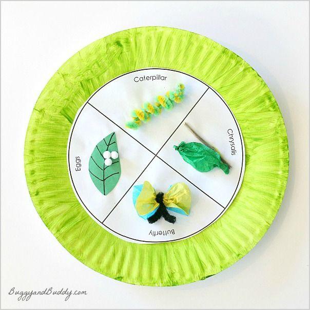 Mariposa de la vida de papel Ciclo Craft Plate for Kids (w / plantilla GRATIS) ~ BuggyandBuddy.com