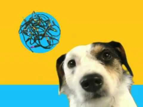 Video Pet Insurance for Dogs and Cats - Petplan USA Dog Rocks TV Ad -