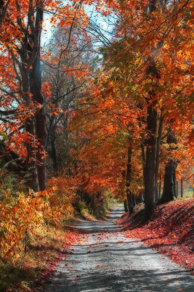 Country road (West Virginia) by wvgasguy