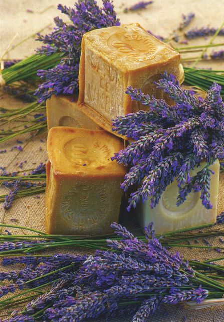 Soap and lavender (Provence, France) - Savon de Marseilles