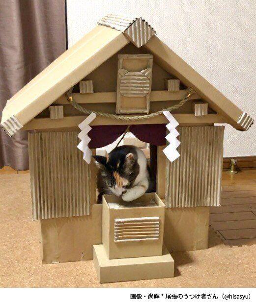 Twitterユーザー・尚輝さん(@hisasyu)さんのお母さんが、ダンボール箱で猫サイズの神社を建立し、そのクオリティの高さが絶賛されています。