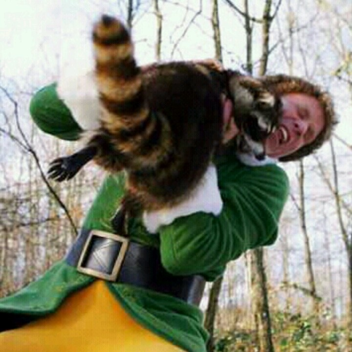 Buddy The Elf, Elf Movie, Funny