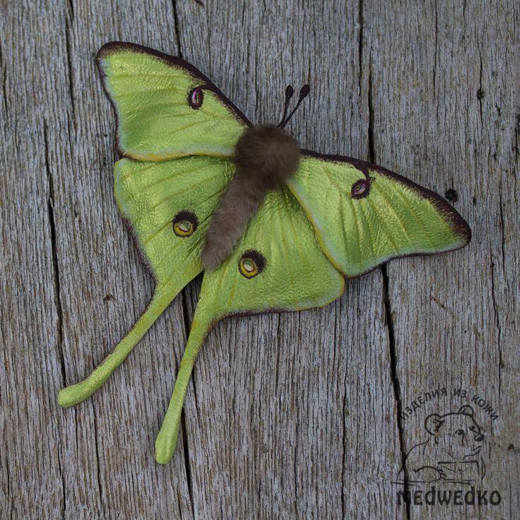 Брошь Бабочка Сатурния Луна из натуральной кожи. Подчеркнет вашу женственность и красоту! #бабочка_сатурния_луна #бабочка #брошь_бабочка #бабочка_из_кожи #кожаная_брошь #подарок_девушке #brooch_butterfly #actias_luna #leather_brooch #butterfly #leather_butterfly #gift_for_her