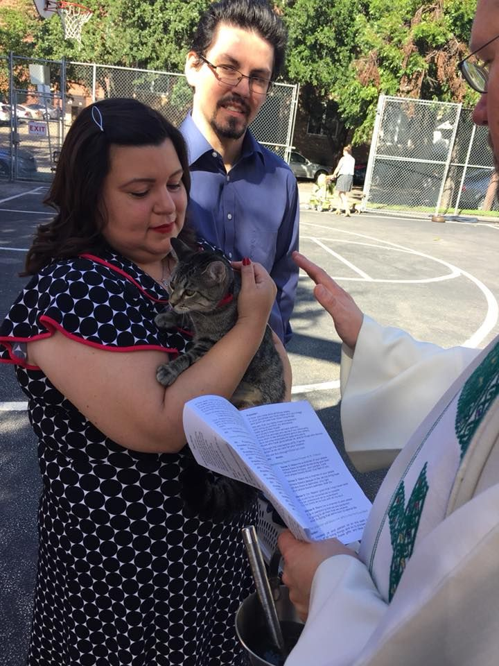 Paulist Fr. Rich Andre - Blessing of the Animals at St. Austin Parish in October 2017.