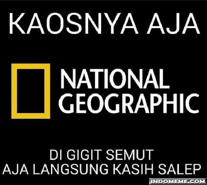Kaosnya Aja National Geographic Lucu Memelucu Http Www