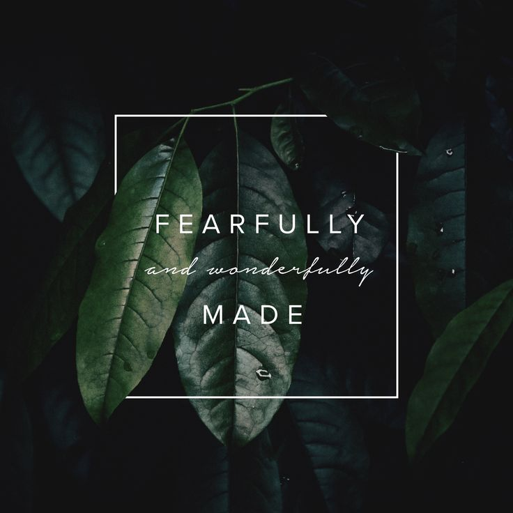 Fearfully and wonderfully made #inspiration