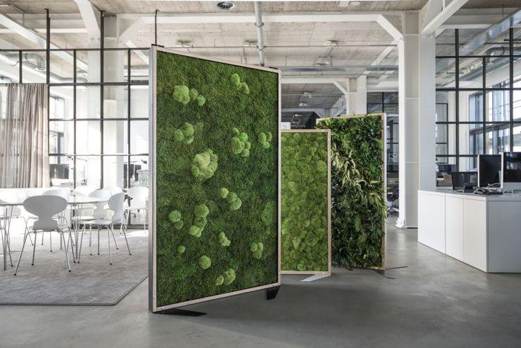 styleGREEN Raumteiler varioGREEN mittel (170 x 80 cm) - Pflanzenbilder und Moosbilder von styleGREEN