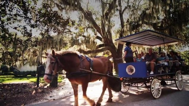82 best beaufort attractions images on pinterest south for East coast weekend trips