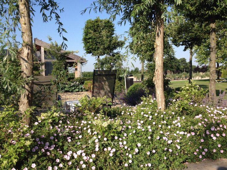 Genieten van de prachtige tuin van de Zwaluwhoeve, vooral wanneer alle bloemen prachtig gaat bloeien.