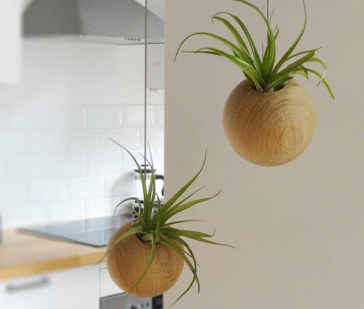 Matières naturelles - Suspension jardinière  via Goodmoods / Etairnity / Prix : 89.82€