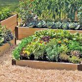 raised beds: Gardens Ideas, Gardens Boxes, Gardens Supplies, Gifts Cards, Raised Beds, Rai Gardens, Beds Gardens, Beds Corner, Rai Beds